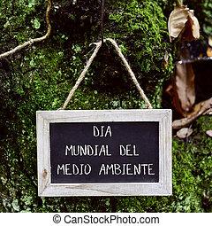 texto, mundo, ambiente, día, en, español