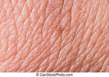 textura, piel humana