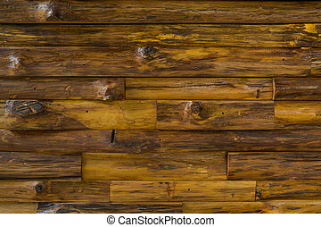 Texture Background of Wooden Log