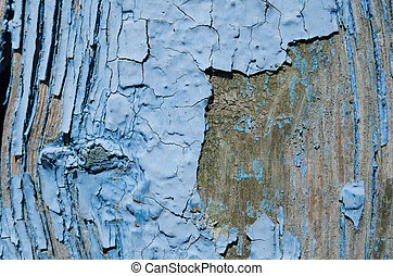 blue paint peeled off the wood - Texture, blue paint peeled...