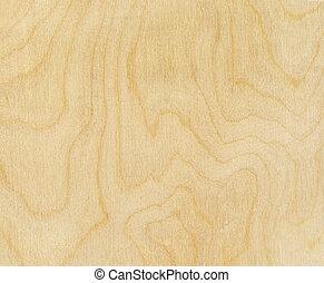 texture bois, bouleau