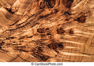 Texture cross section of elm tree. Natural burl wood background. Wood surface. Exotic wooden beautiful pattern. Live elm slab. Furniture manufacture. Woodworking and carpentry production.