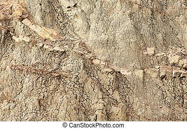texture, de, argile, fond