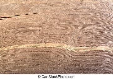 Texture from natural old wood. Bog oak background.
