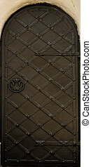 Texture metal door. Background