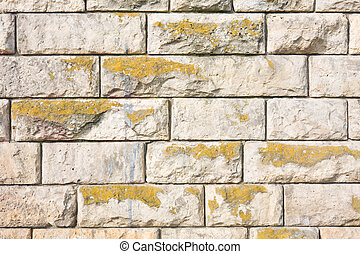 Texture of a brown stone wall.