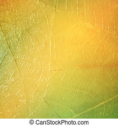 Texture of a leaf as background. Vector background with abstract gradient