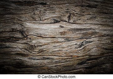 texture of bark wood ,vignette background