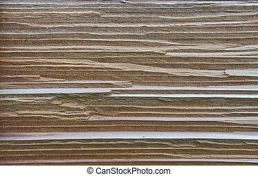 cedar wood  - texture of cedar wood in natural