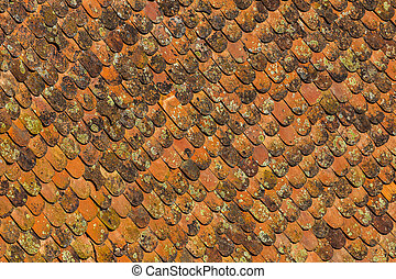 texture of clay tiles on a roof old