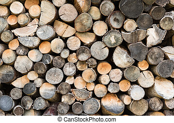 Texture of cut wooden trunks