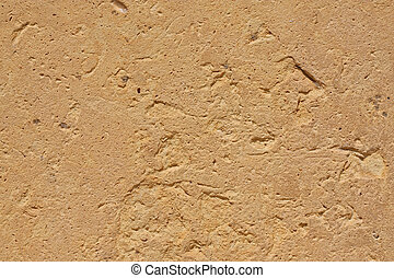 The texture of egyptian sandstone