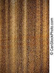 texture of light beige wooden surface close up