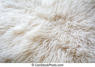 Texture of natural sheep wool. White soft warm background