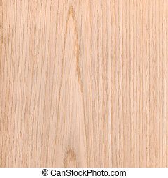 texture of oak, natural rural tree background