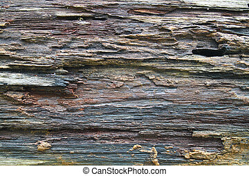 texture of old rough wood on the board