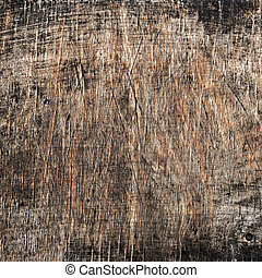 texture of old wood close up