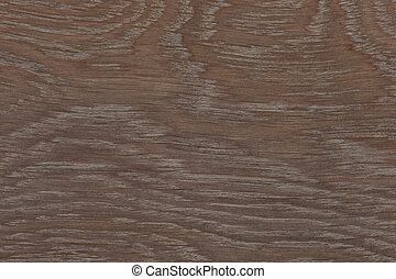 Texture of old wood pattern background. High resolution photo.