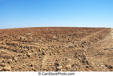 texture of plowed field and blue sky