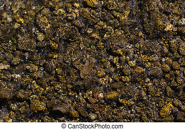 Texture of rocks in the river