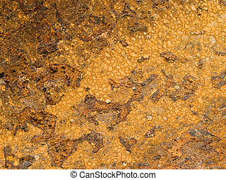 Texture of rusty metal for a background