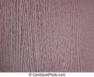 texture of the bark tree
