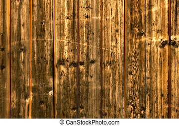 texture of the old natural wood