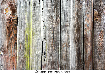 Texture of the old wooden fence