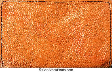 texture of the red skin