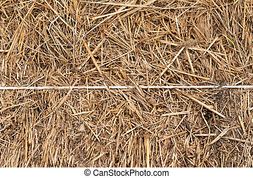 texture of the stack of hay in close up