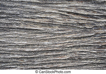 Texture of the wooden background