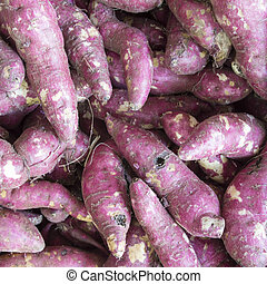 yams - texture of Whole purple yams, vegetables background