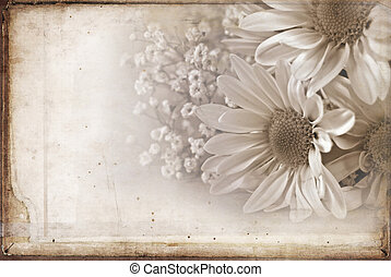 Daisy bouquet in sepia tones with textured effect.