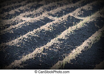 textured effect on plowed land in spring