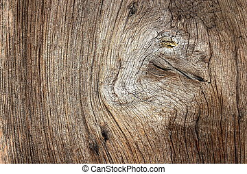 textured knot on oak wood