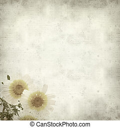 textured old paper background with garland chrysanthemum