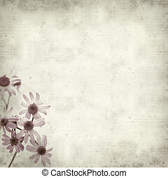 textured old paper background with Pericallis webbii plant, ...