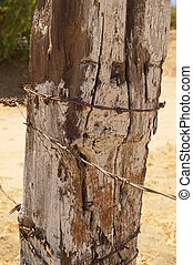 textured weathered wood fence post