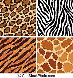 textures, fourrure, animal
