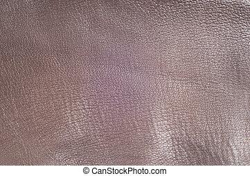 textuur, van, de, huid