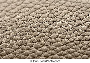 textuur, van, de, skin.