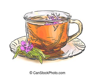 thé, verre., rosebay, willowherb