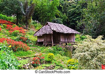 thaï, hill-tribe, style, hutte