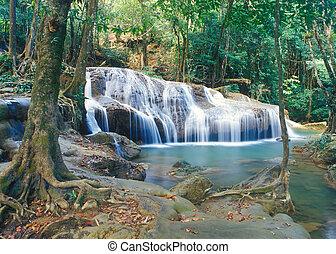 thaïlande, chute eau, jungle