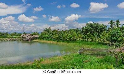 thaïlande, parc