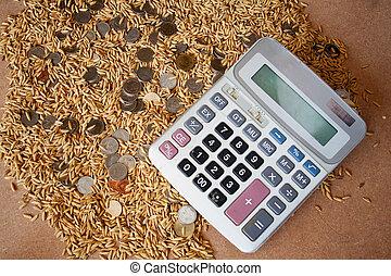 thaïlande, riz, rendement, faisant argent