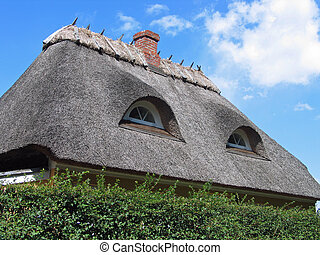 Thached roof house