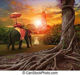 thai elephant and kingdom umbrella in ancient palace pagoda...