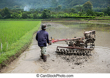 Thai farmers working with a handheld motor plough in a rice field