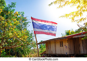 Thai flag of Thailand with tree and home background